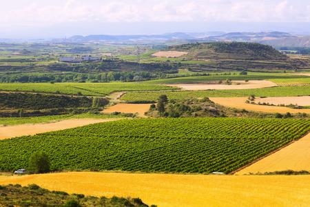 Rural  landscape  near Haro. La Rioja, Spain photo