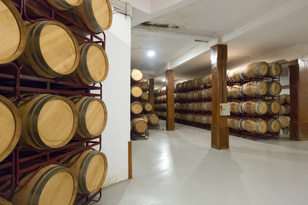Rows with many wooden barrels in  winery factory