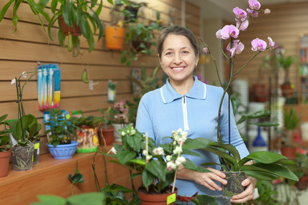 Female florist with orchid plant at flower store  photo