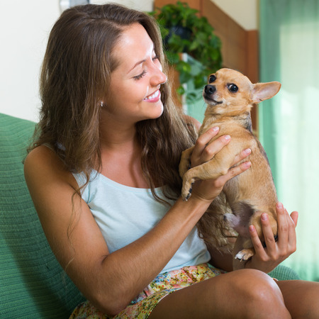russkiy: Smiling young woman holding Russkiy Toy Terrier indoor