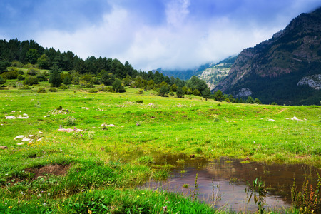 highland meadow with small lake. Pyrenees, Catalonia photo