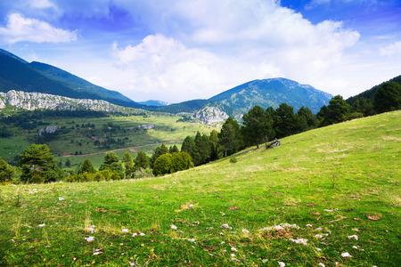 paisaje mediterraneo: paisaje de monta�a con el prado. Catalu�a Foto de archivo