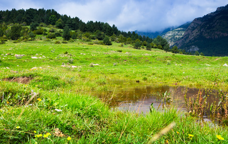Summer view of highland meadow with  lake. Pyrenees, Catalonia photo