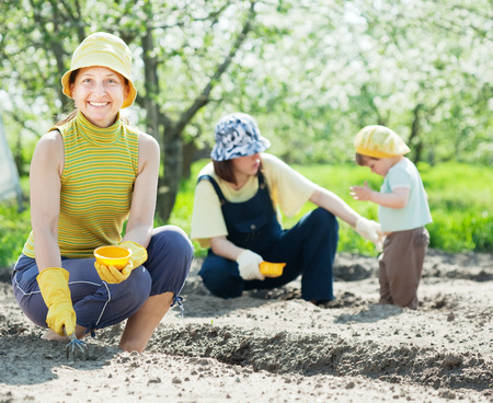Happy family sows seeds in soil at field photo