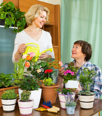 flowerpots: Two smiling female pensioners near table with many flowerpots