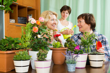 flowerpots: Two mature women  and girl near table with many flowerpots Stock Photo