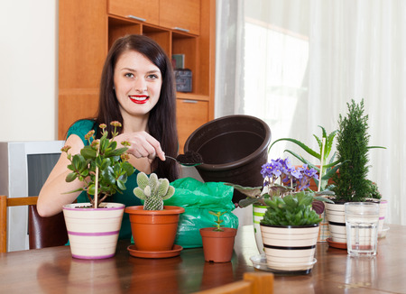 Smiling woman transplanting flowers plant in flowerpot at  home photo