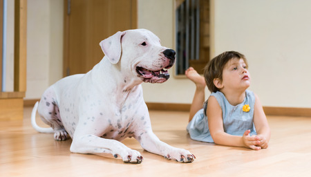 nice female toddler on the floor with dogo Argentino (focus on dog) photo