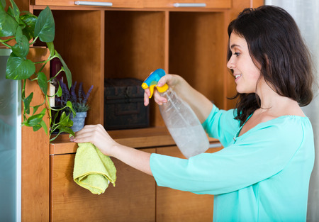 up service: Happy brunette girl cleaning furniture with cleanser and rag in living room Stock Photo