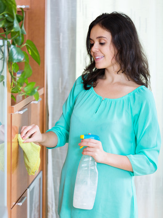 cleanser: Adult brunette girl cleaning furniture with cleanser and rag in living room Stock Photo