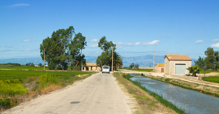 ebre: road through the rice fields at Ebro Delta. Spain