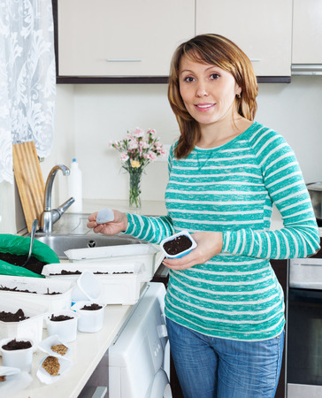ordinary woman: Ordinary woman in green sowing sprouts in domestic kitchen Stock Photo