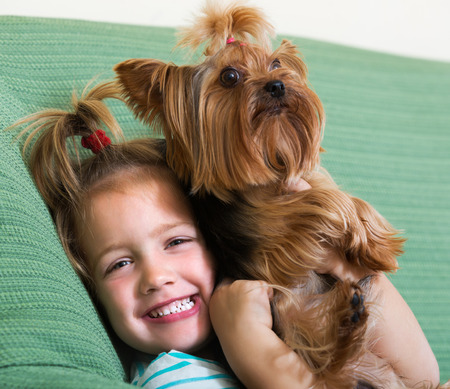 yorkie: Female child playing with charming Yorkie at home Stock Photo