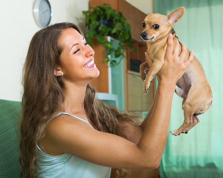 russkiy: Happy smiling young female holding Russkiy Toy Terrier indoor