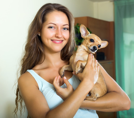 russkiy: Smiling girl holding Russkiy Toy Terrier indoor