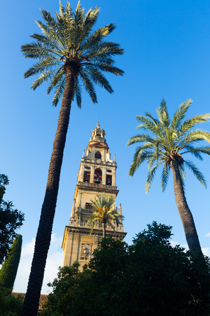 bell tower: Bell tower of Cordoba Cathedral.  Spain