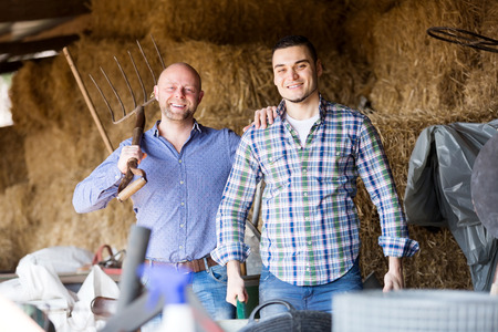 hayloft: Two happy farm workers tedding the hay at hayloft. Focus on the left man Stock Photo