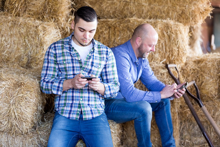 hayloft: two happy relaxed farm workers holding phonesin the hayloft. Focus on the left man