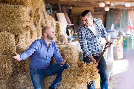 hayloft: Dos trabajadores de granja feliz trabajando en el pajar. Centrarse en el hombre izquierdo