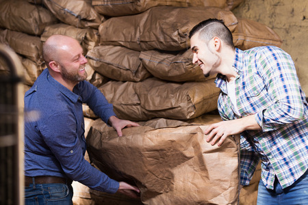 stockpiling: Two positive loaders handling sacks with something heavy indoors