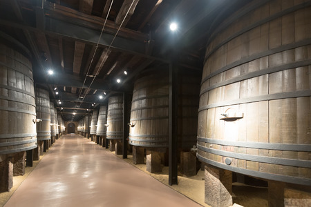 wine industry: Interior photo of old winery  with wooden barrels