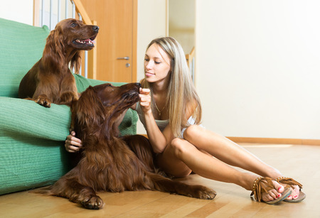 hunter playful: Beautiful girl sitting on the floor and hugging two purebred dogs