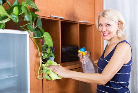 cleanser: Smiling woman dusting wooden furniture with rag and cleanser at home