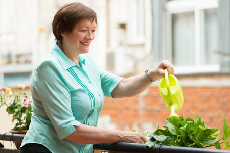 decorative balcony: Positive smiling aged woman watering decorative plants on balcony