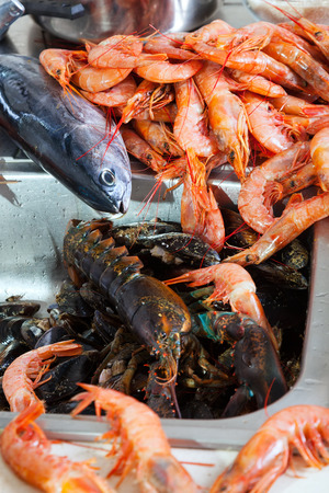 nutricion: Fresh raw sea foods and fish at kitchen sink