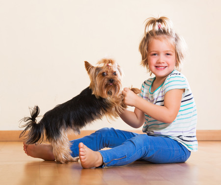 terrier dog: Happy little girl holding Yorkshire Terrier and smiling Stock Photo