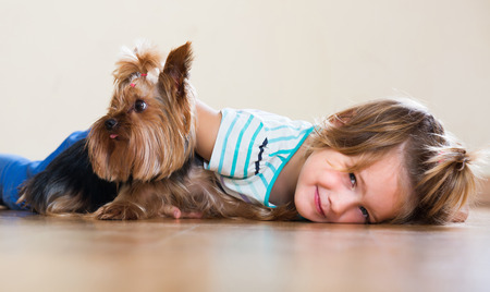 yorkie: Child embraces and playing with charming Yorkie at home Stock Photo