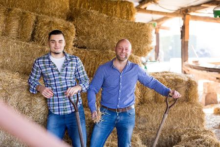 granja: Dos trabajadores agrícolas jóvenes henificación el heno en el pajar
