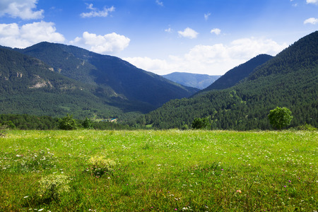 Simple landscape with mountain meadow in august day. Pyrenees, Catalonia photo