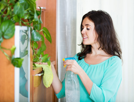 dusting: Young brunette woman dusting wooden furniture with detergent and cloth Stock Photo