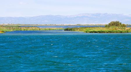 ebre: Delta of Ebro river in summer. Catalonia, Spain