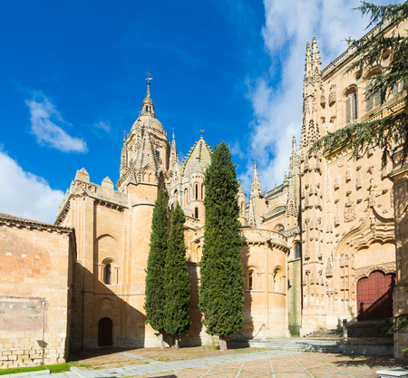 castile leon: Cathedral of Salamanca in sunny  day. Castile and Leon, Spain