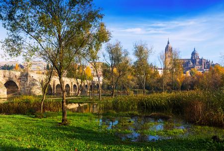 salamanca: Autumn  landscape in Salamanca. Castile and Leon, Spain