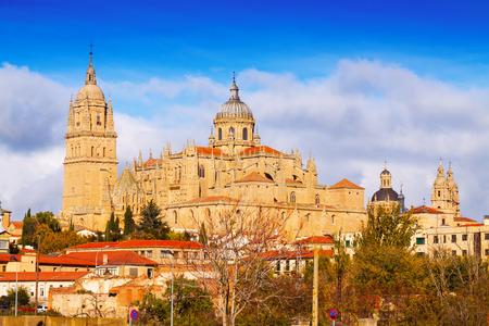 salamanca: Cathedral of Salamanca in autumn day. Spain Stock Photo