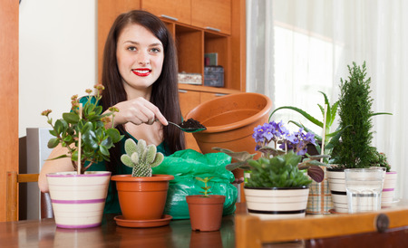 replant: Young woman working with  flowers in pots at home