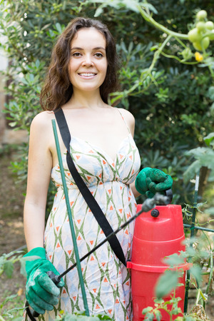 insecticidal: Smiling woman spraying tomato plant in the garden closeup