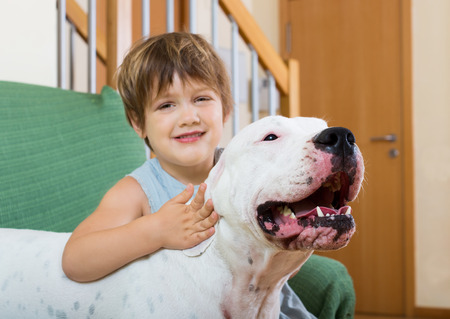 argentino: nice girl on couch with dogo Argentino (focus on dog) Stock Photo
