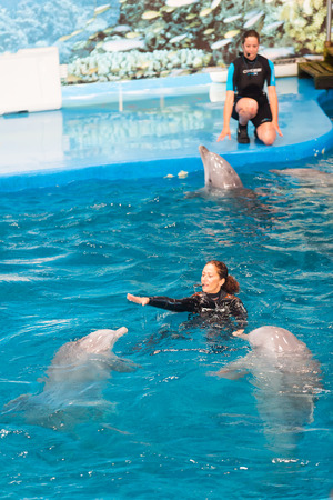 dolphinarium: BARCELONA, SPAIN - MAY 24, 2015:  Trainers and dolphins performing  in Dolphinarium. Barcelona