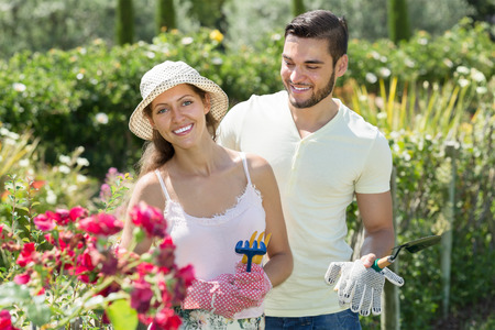 floriculturist: Young married couple seedling garden plants in summer holiday