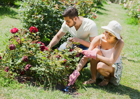 Young couple planting flowers in the garden and smiling