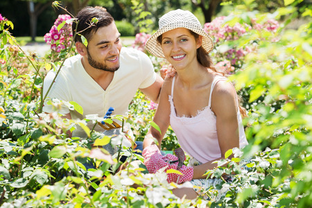 floriculturist: Young smiling couple is engaged in gardening together Stock Photo