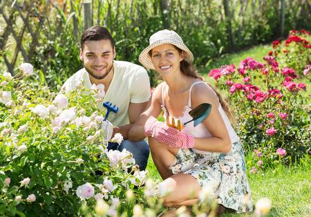Young smiling couple gardening in rose garden