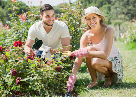 horticultural: Happy couple planting plants with  horticultural sundry in the garden
