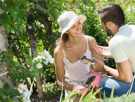Young family seedling garden flowers in gloves at summer holiday Stock Photo