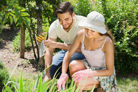 floriculturist: Young married couple seedling garden flowers  in summer holiday Stock Photo