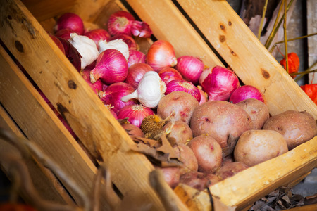 harvested: harvested onion and potatoes in wooden box